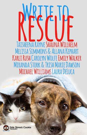 Write To Rescue Anthology cover